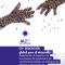 Proyecto CO-Educación Global. Documento de Sistematización